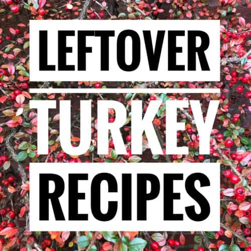 leftover turkey recipes lettering over red berries