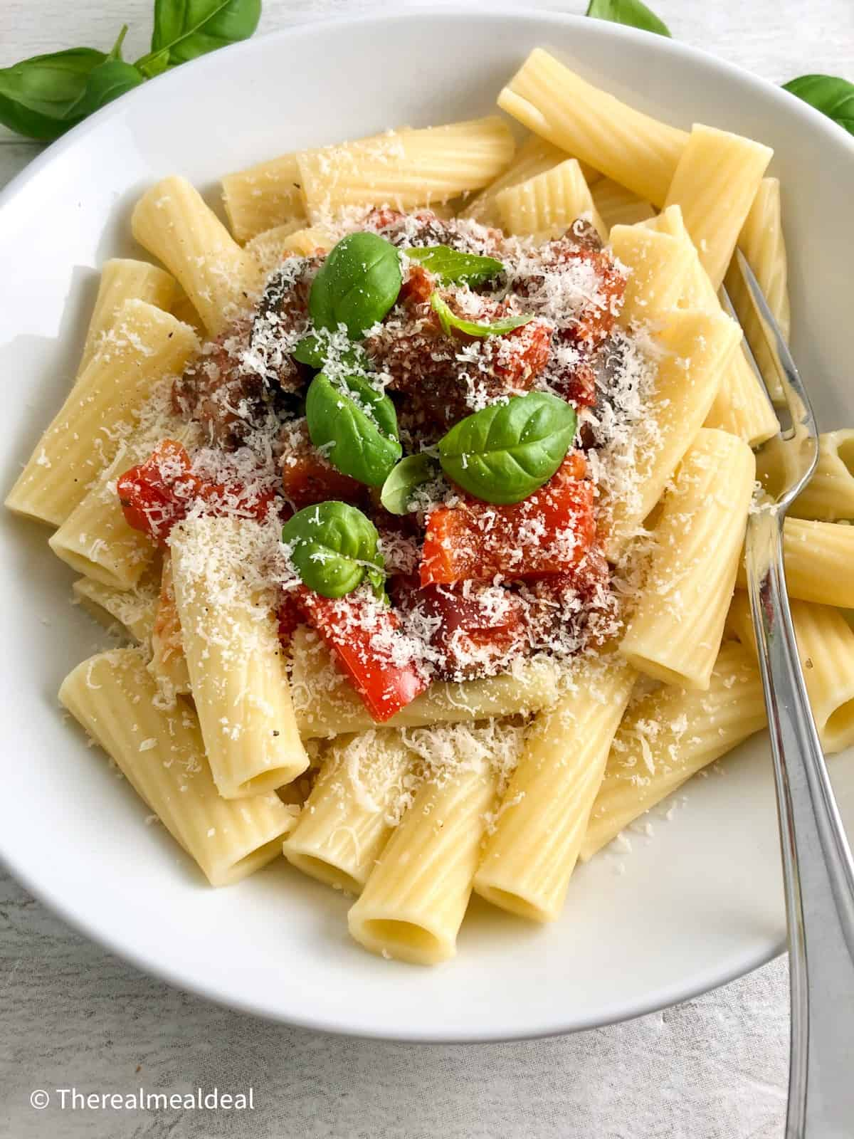 tomato pasta sauce served wth rigatoni and parmesan cheese