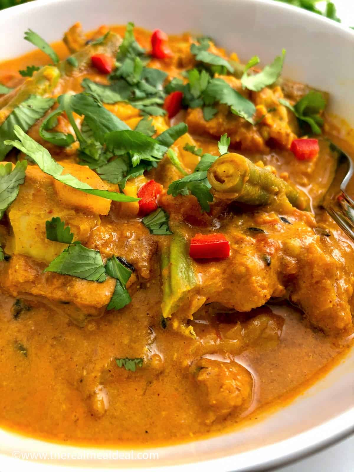 close up image of creamy fish curry