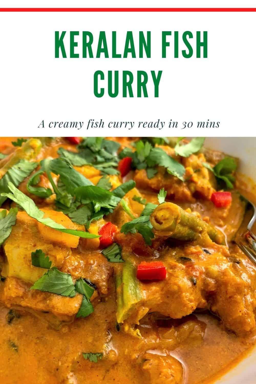 Keralan Fish Curry Pinterest image, close up of curry